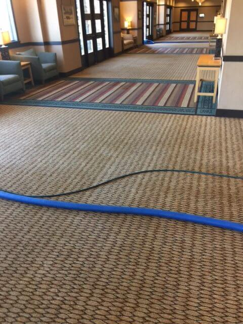 Prescott Az Carpet Cleaning Image 8